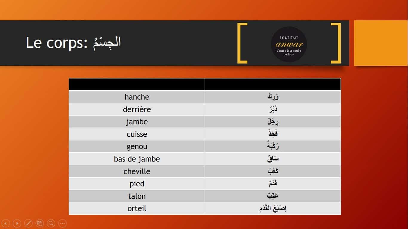 Vocabulaire arabe des parties du coprs en arabe