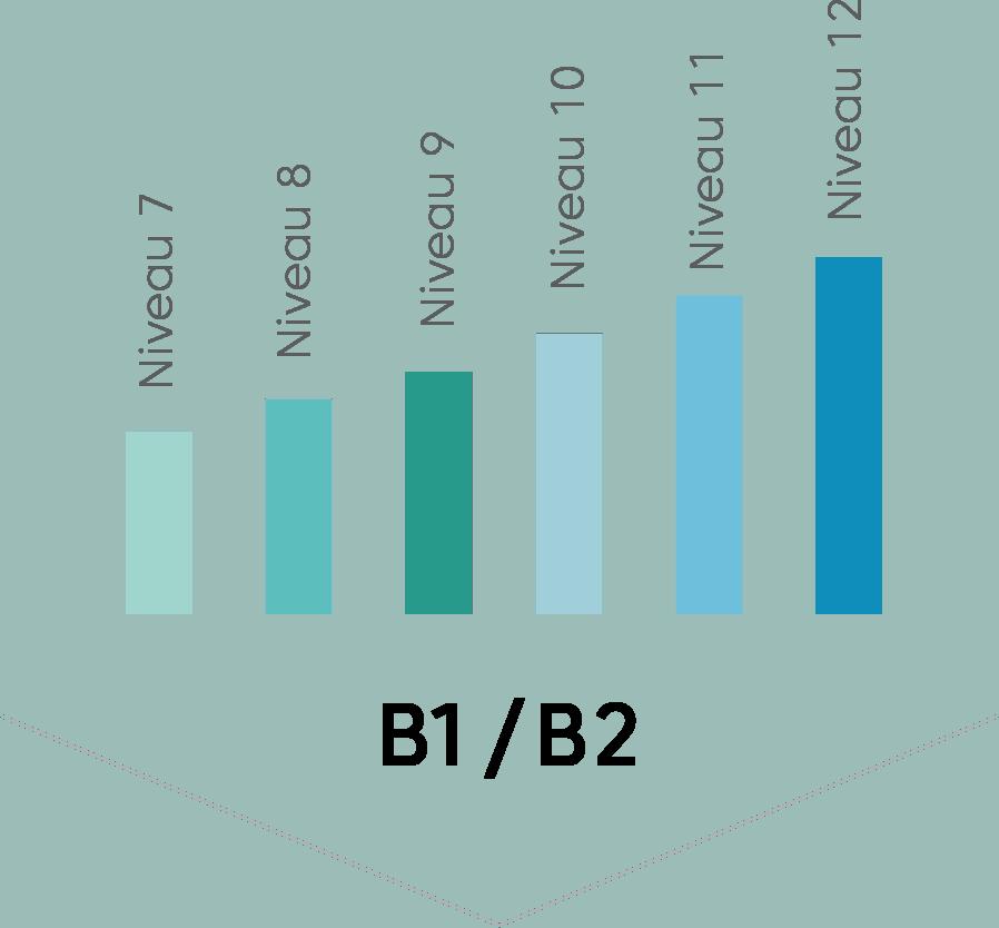 arabe littéraire b1 et b2